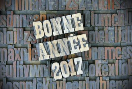 Bonne Anne  2017  pulp ediitons